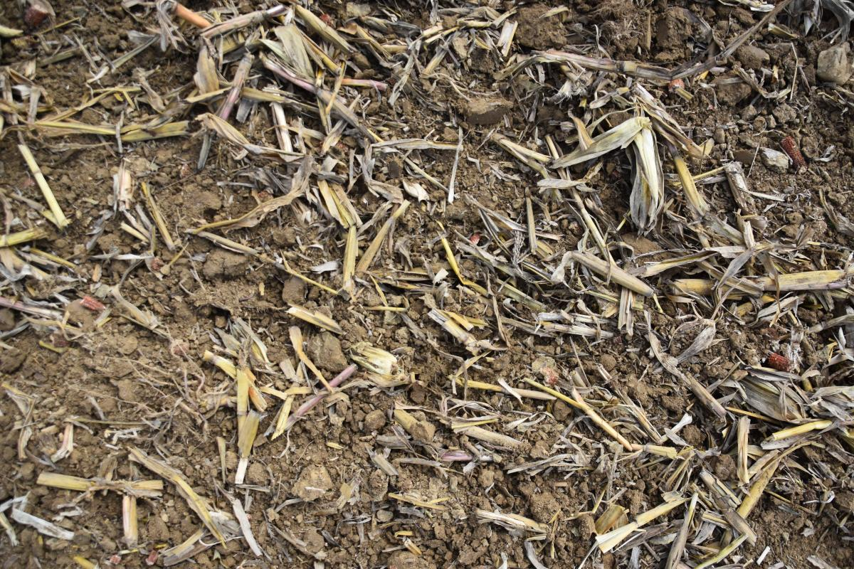 Soil and Manure Management