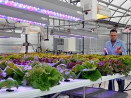 The Ohio State University's 2018 Greenhouse Management Workshop is Feb 8-9.